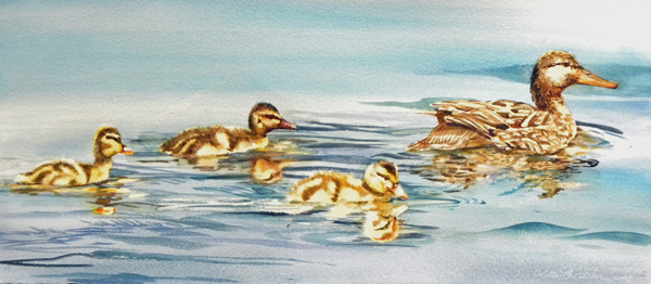 Watercolor ducks