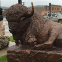 Foam Buffalo Sculpture