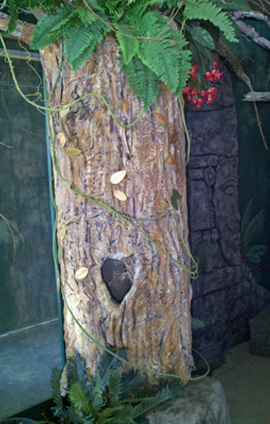 Foam tree in exhibits